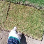 芝生を張る前に用意すべき3つの便利な道具😃✨