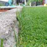 写真でわかるブロック際の芝生を綺麗に処理する方法😃✨