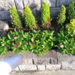 写真でわかる花壇の土をふかふかに再生する方法😃✨