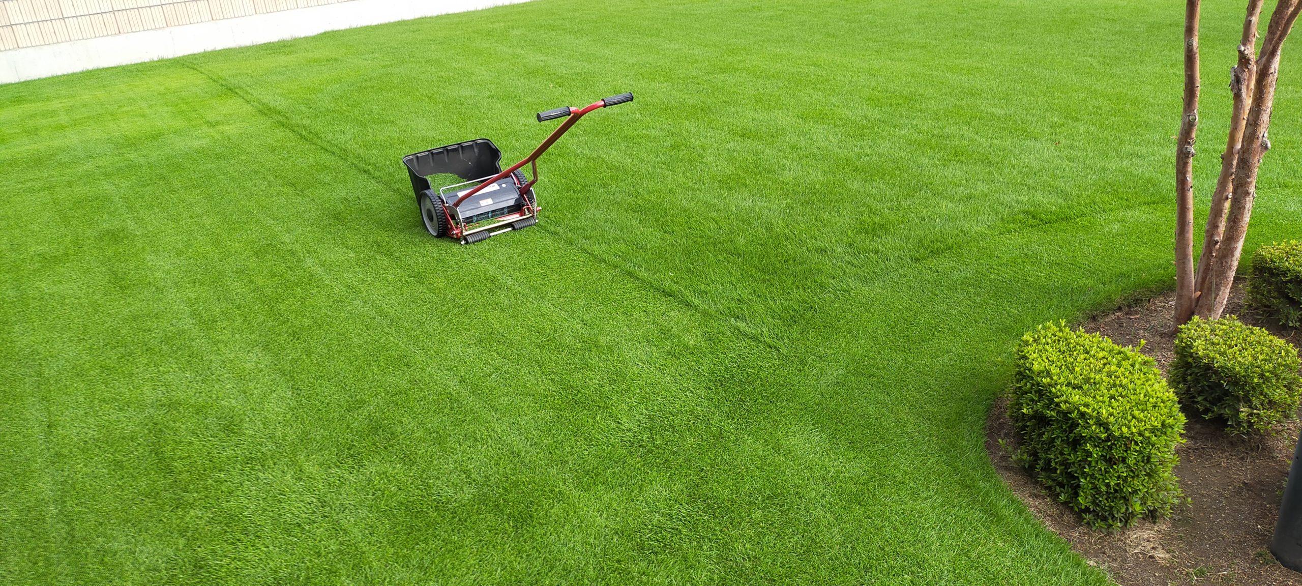 芝刈りの時間を短縮する方法はこれだ😃✨