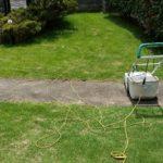 段々と芝生の密度が下がりスカスカになる原因と対策😃✨