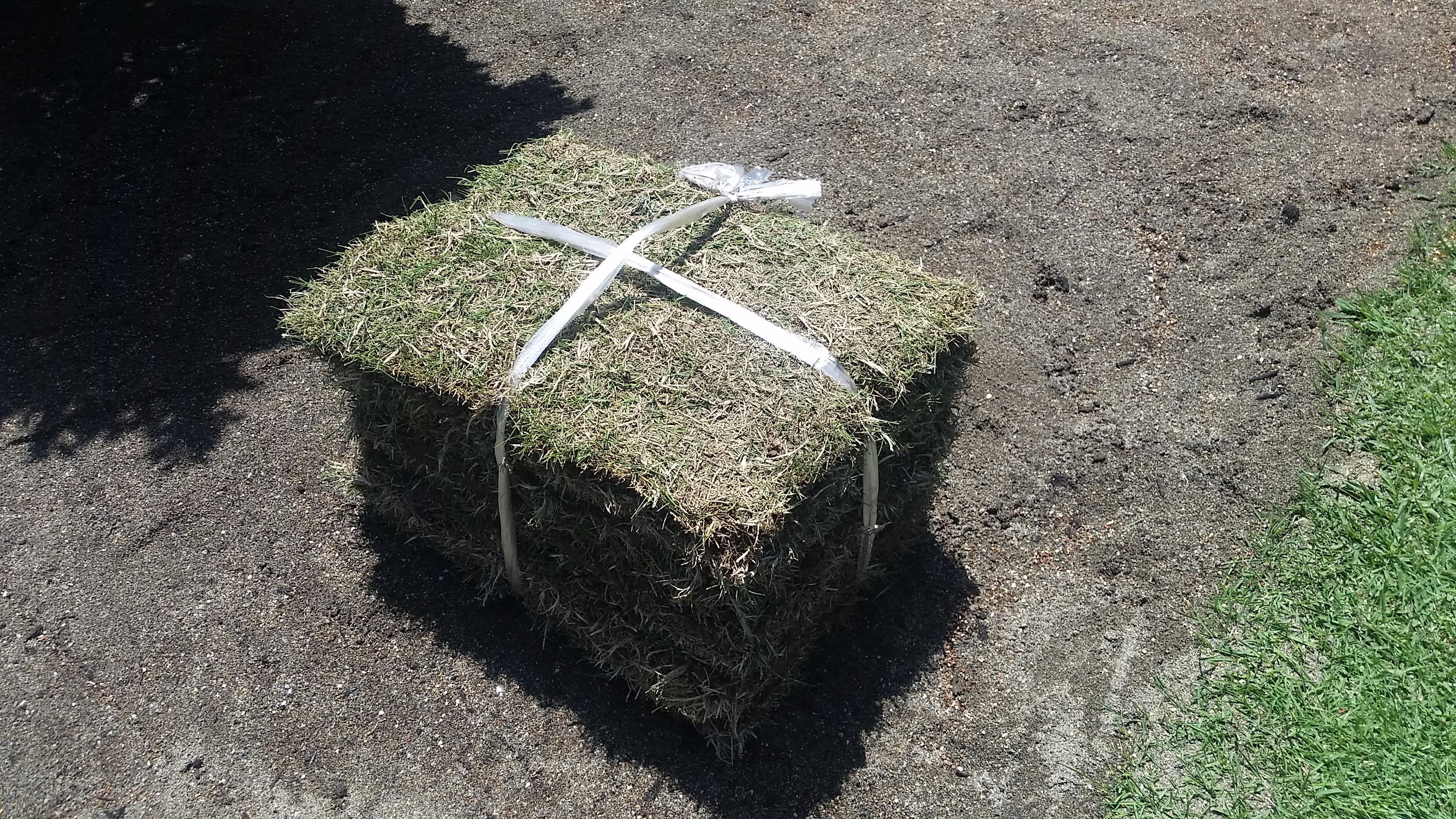 芝張りの方法!写真で分かりやすく解説😃✨