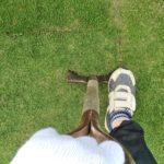 芝生をスコップ1本で簡単に剥がす方法😃✨