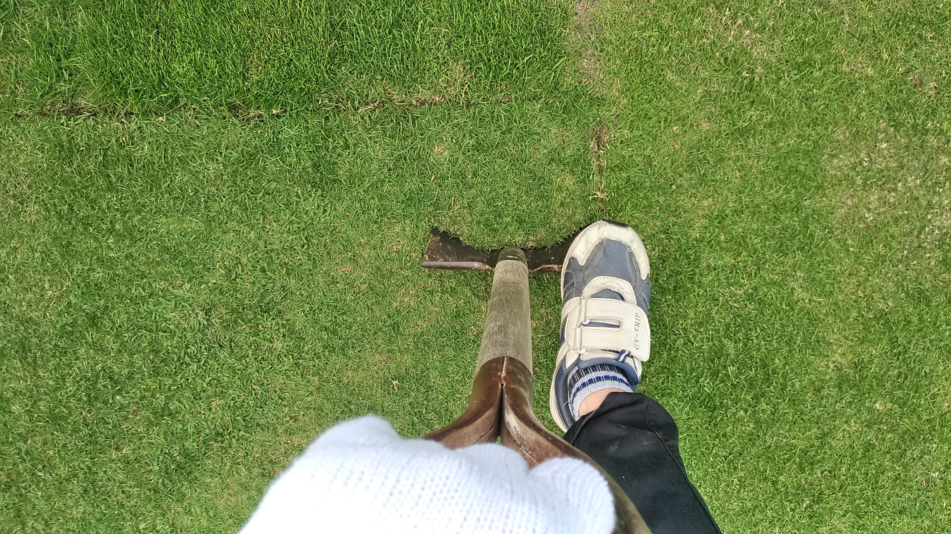 スコップ1本で簡単な芝生の剥がし方😃✨