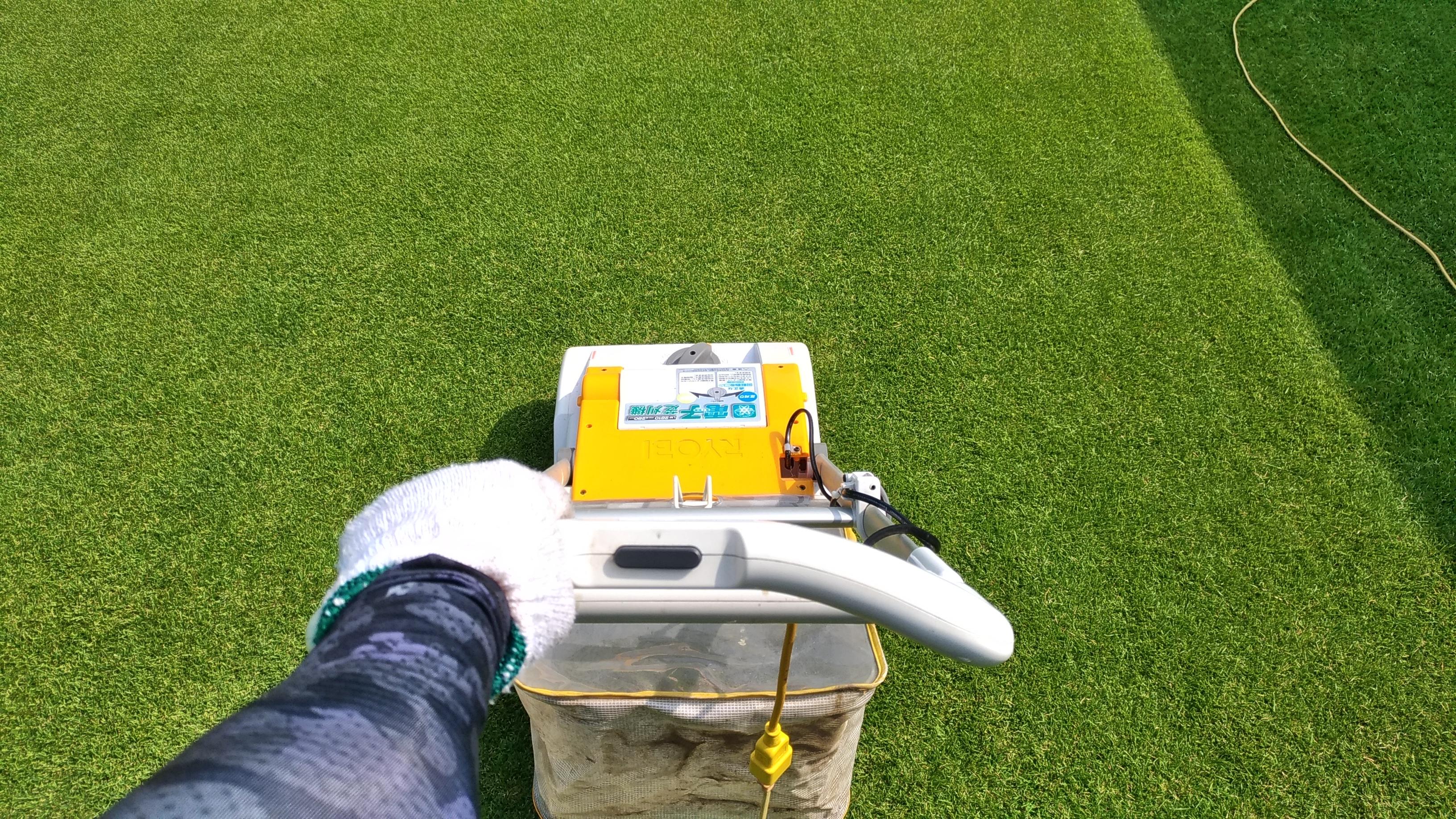 芝生の軸刈り再生方法😃✨