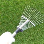 芝生のサッチ取りをレーキ使って簡単に行う方法😃✨