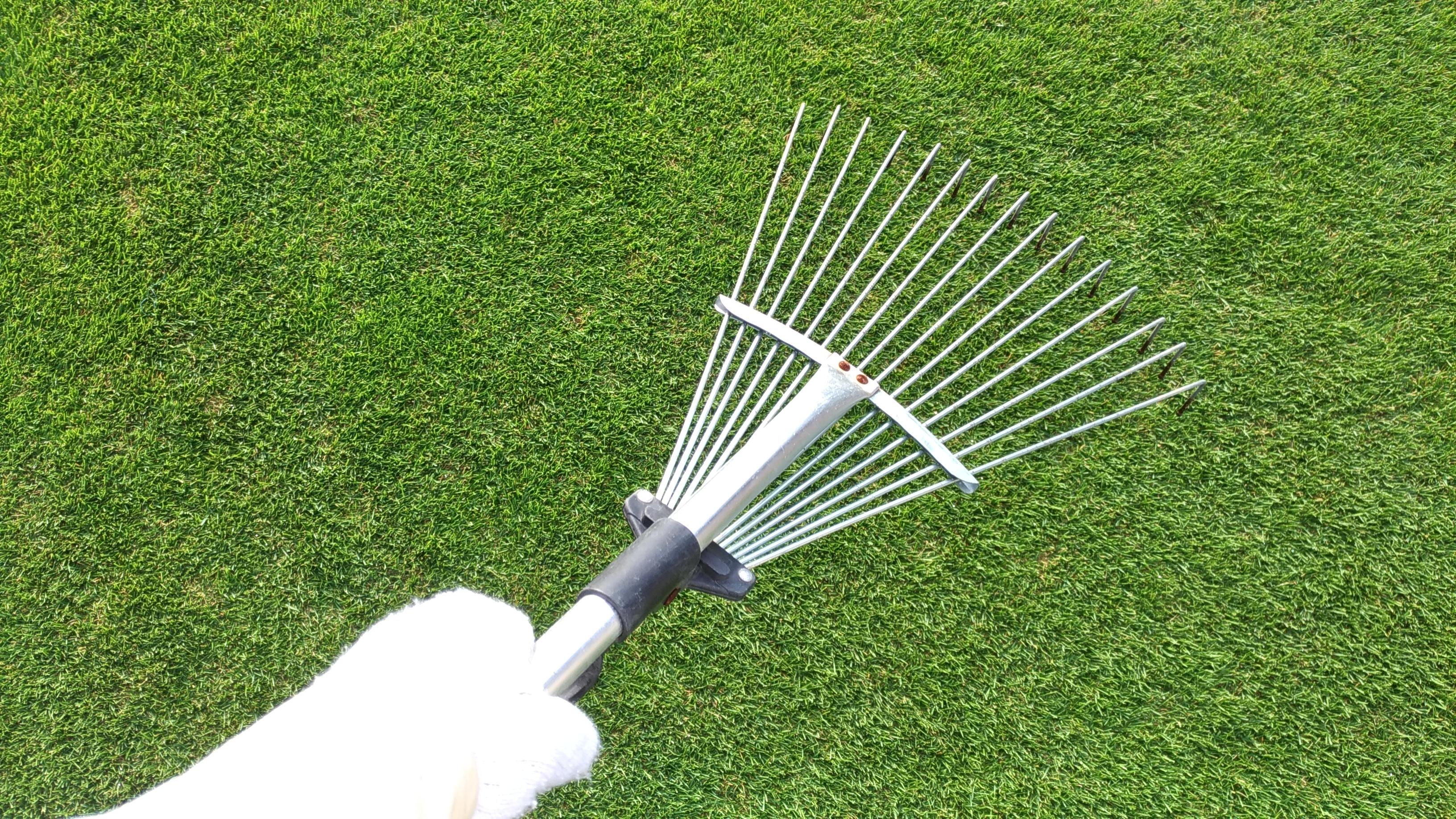 芝生のサッチングをレーキで簡単に行う方法😃✨