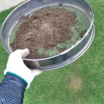 芝生をグングン成長させる目土入れを分かりやすく解説😃✨
