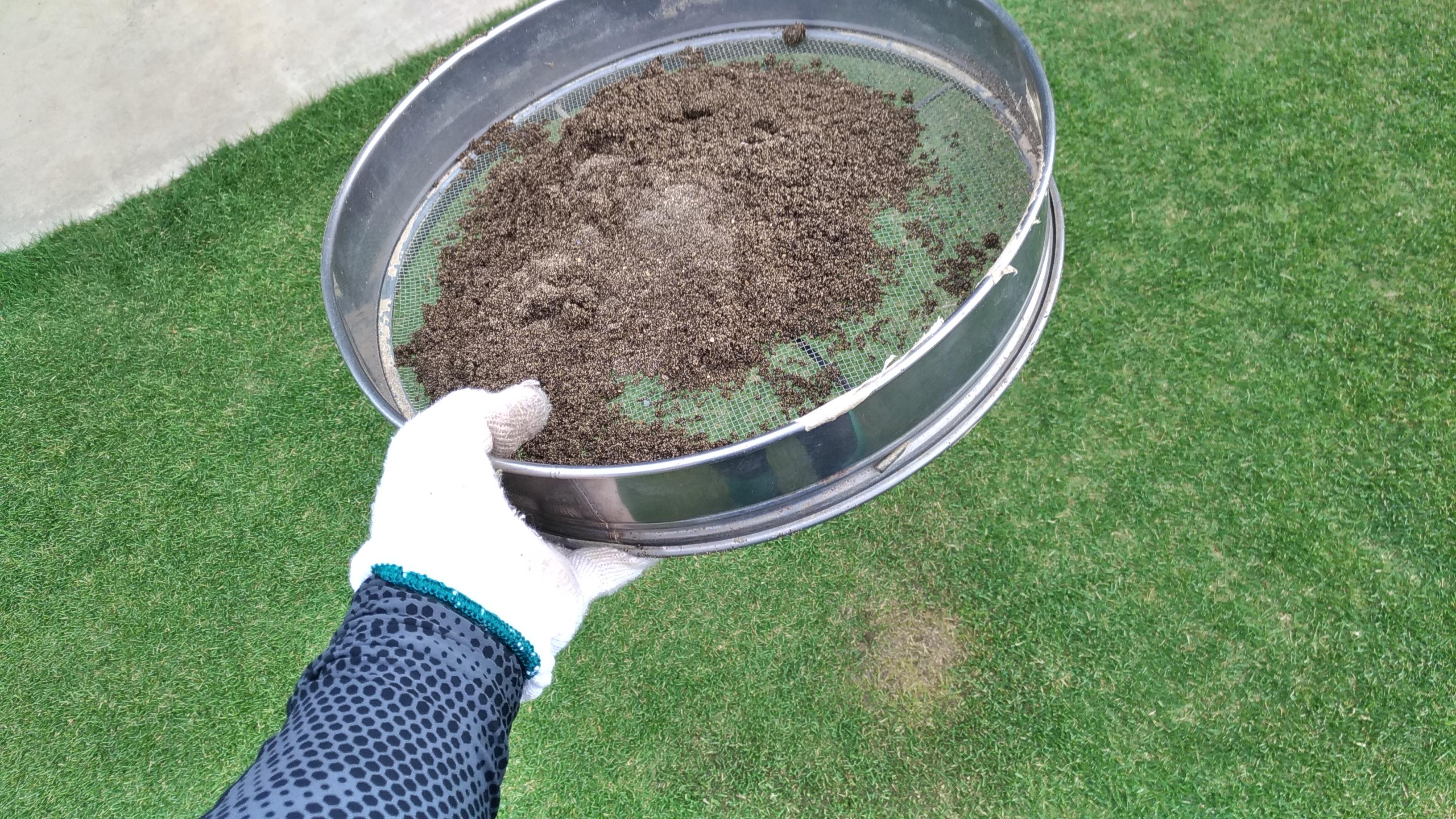 芝生の目土入れを分かりやすく解説😃✨