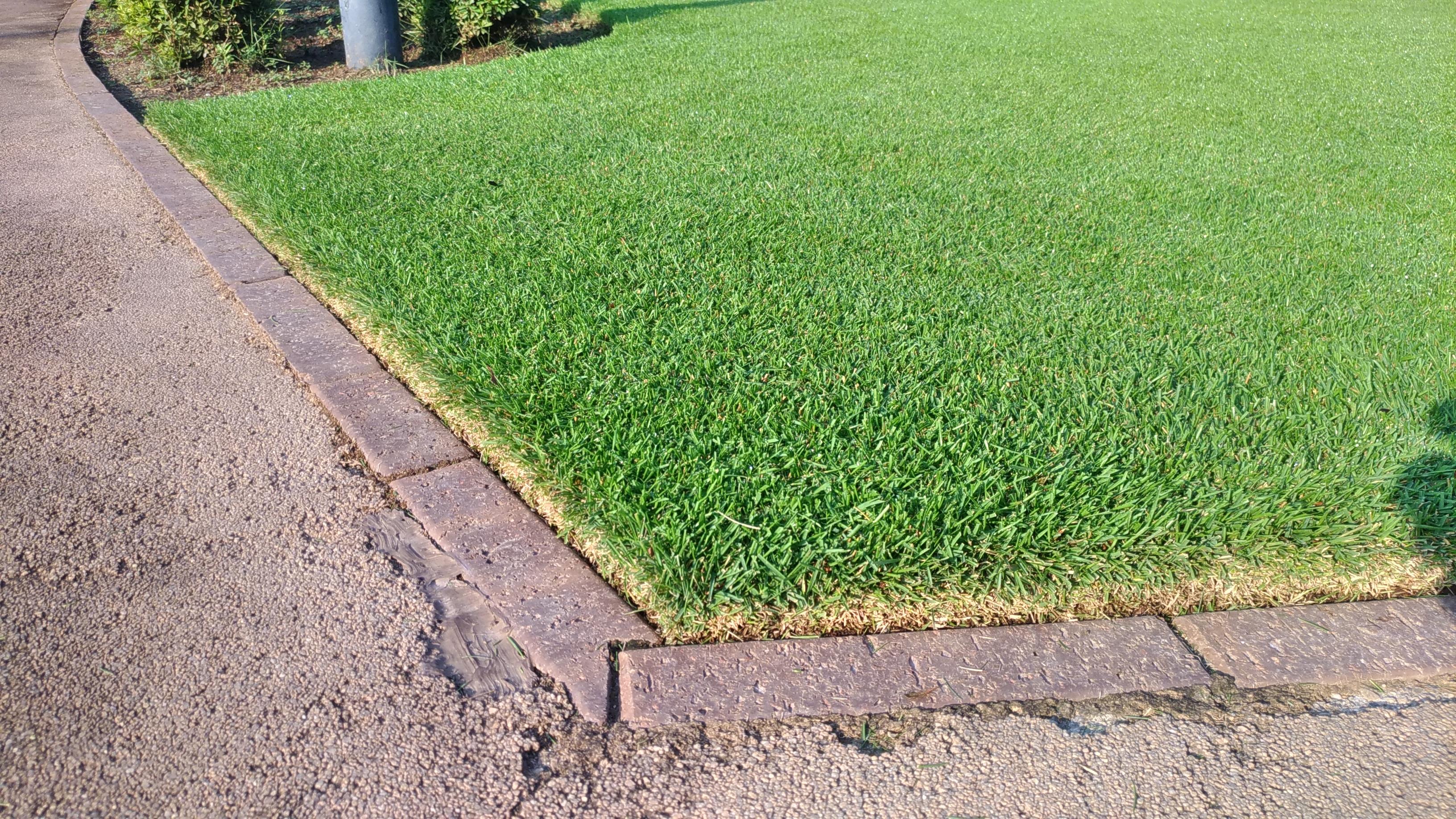 誰でも簡単にできる芝生の際刈りを詳しく解説😃✨