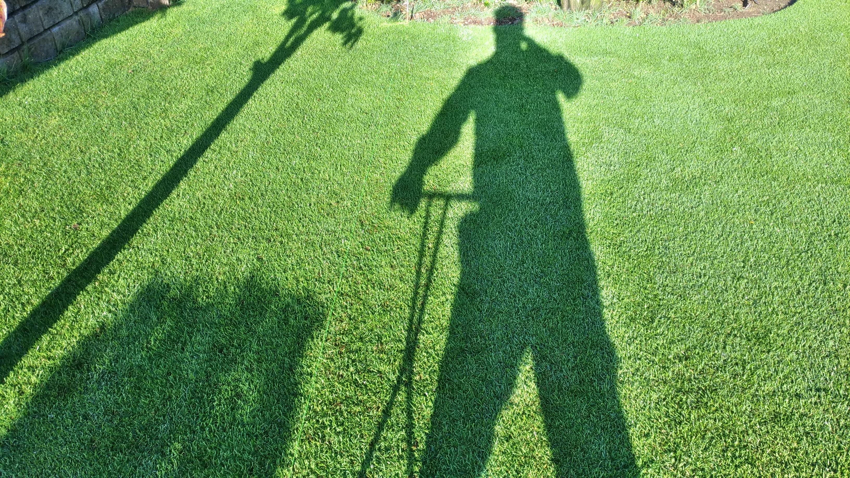迷惑をかけない芝刈りの時間帯を考える😃✨