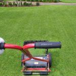 綺麗に仕上げる芝刈りの方法😃✨