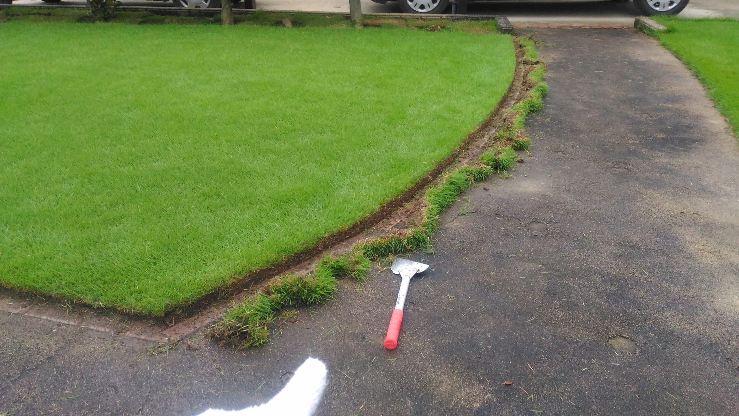 芝生の際刈りを詳しく解説😃✨