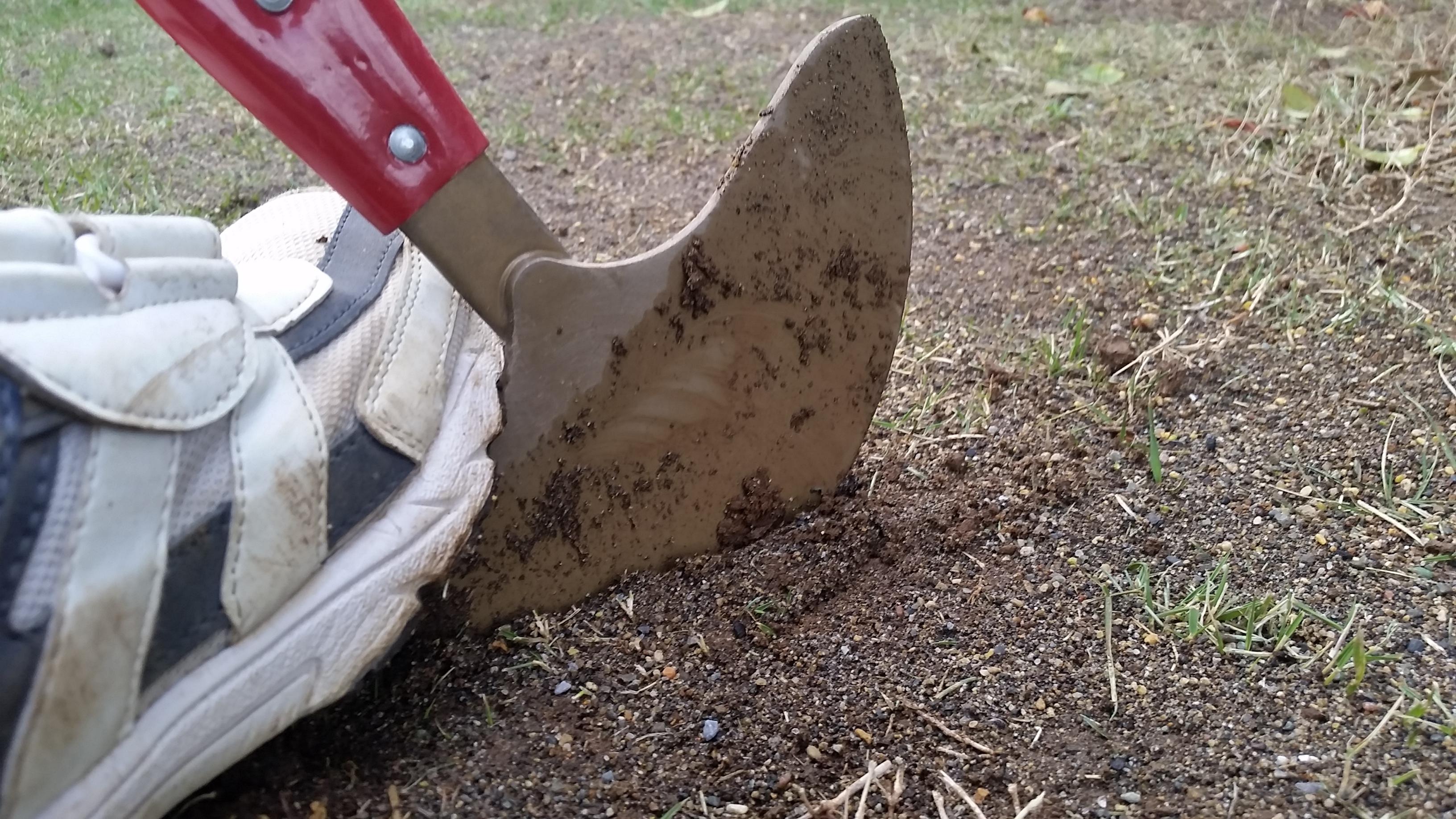 芝生の根切り時期と方法😃✨