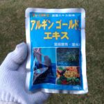 芝生の手入れ!肥料アルギンゴールドエキスで力強く成長させる方法😃✨