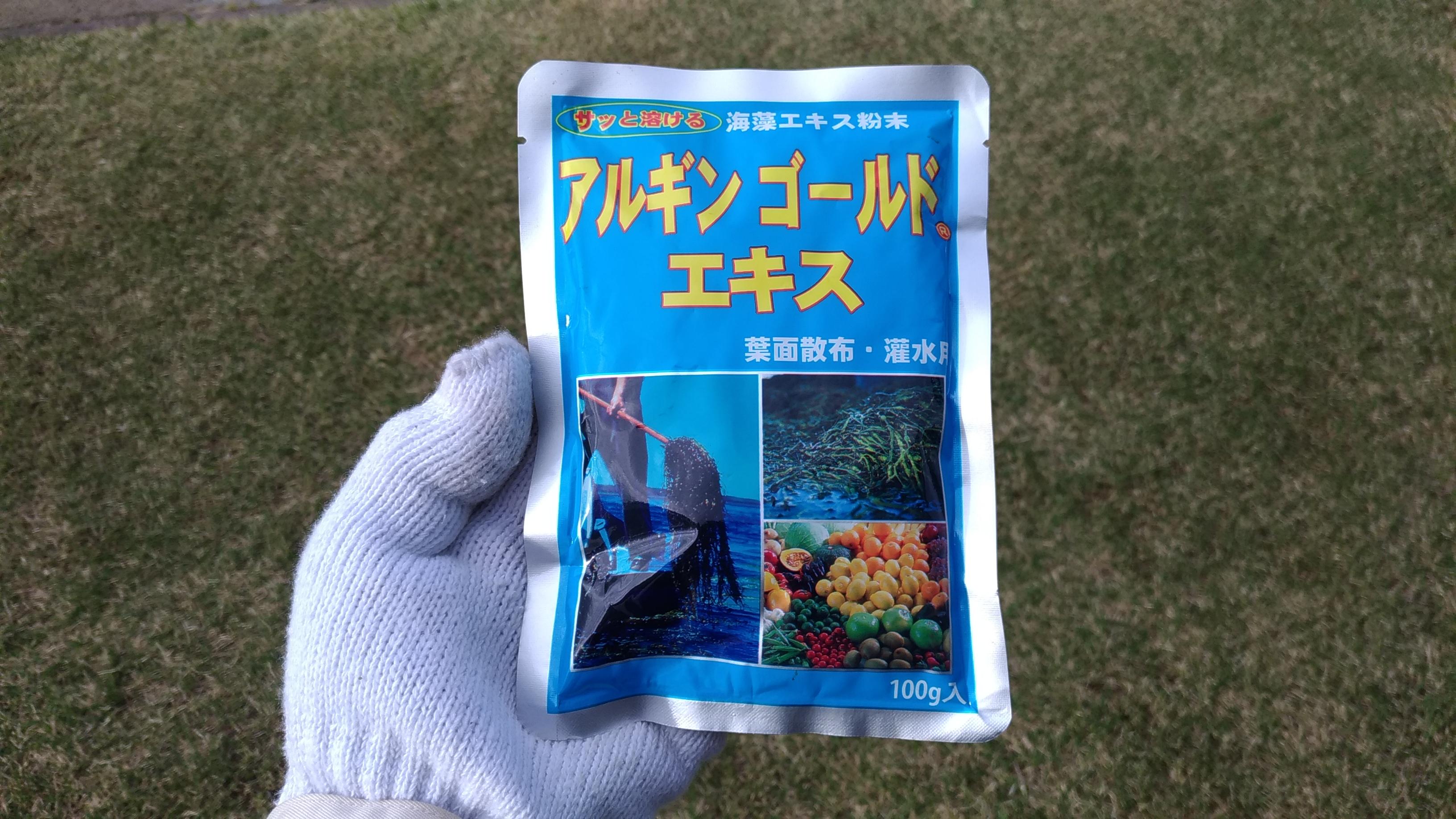 【レビュー】アルギンゴールドエキスで芝生を力強く生長させよう😃✨