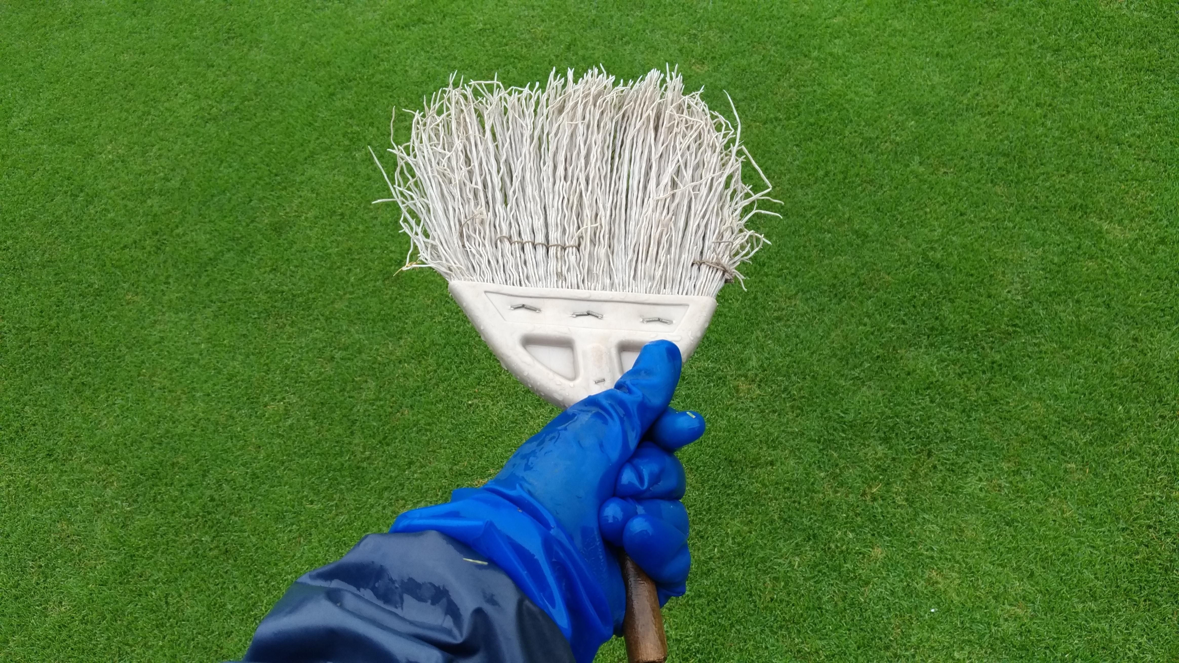 芝生の手入れ!雨の日にできる作業4選😃✨