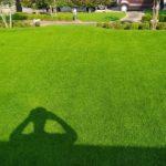 芝生の猛暑対策ベスト4😃✨
