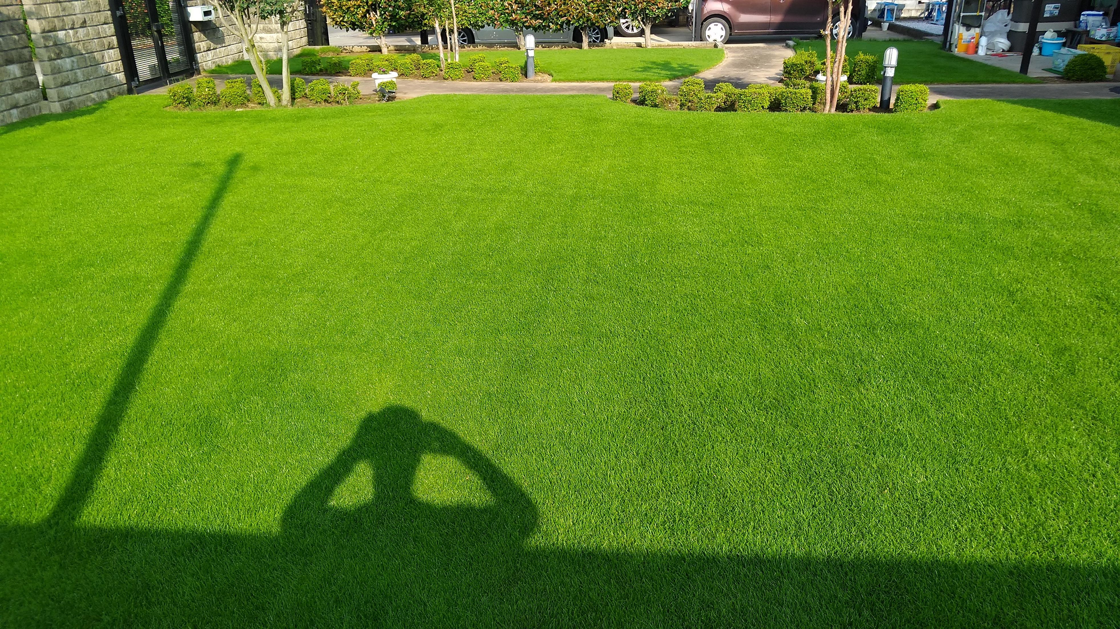 芝生の猛暑対策!夏枯れを防ごう😃✨