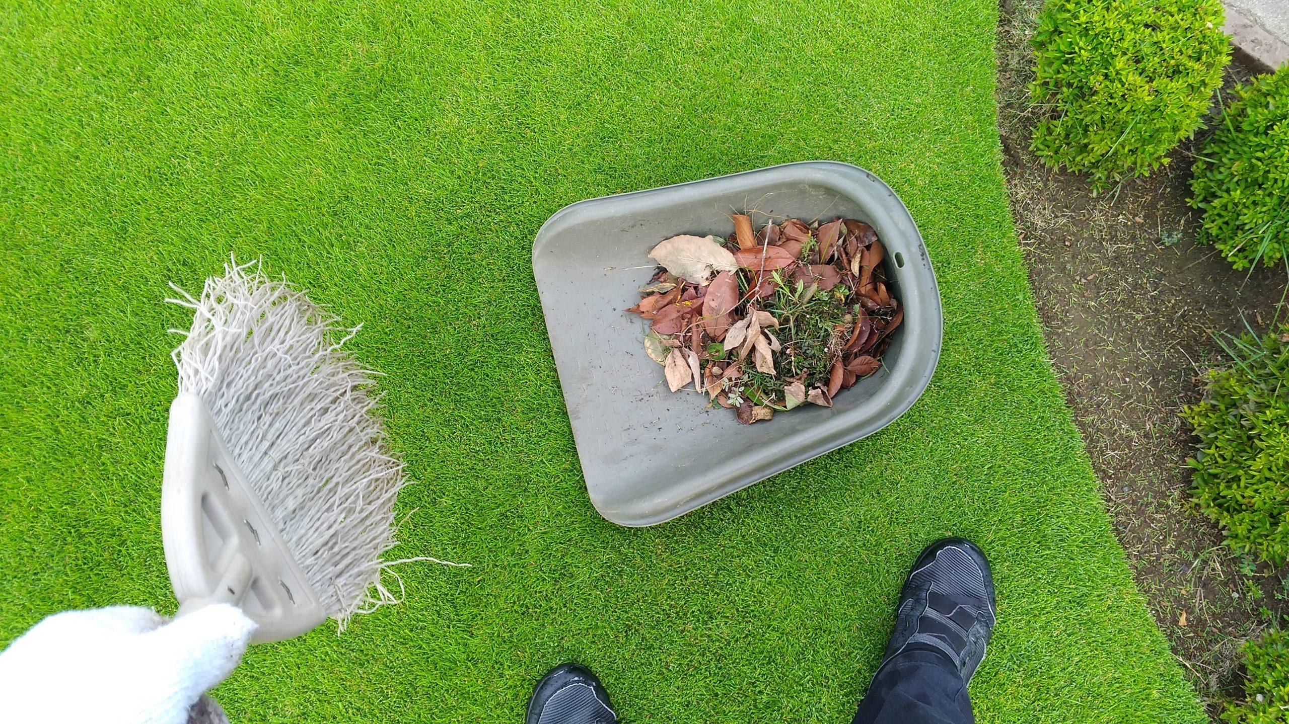 芝生の落ち葉を掃除するコツ😃✨