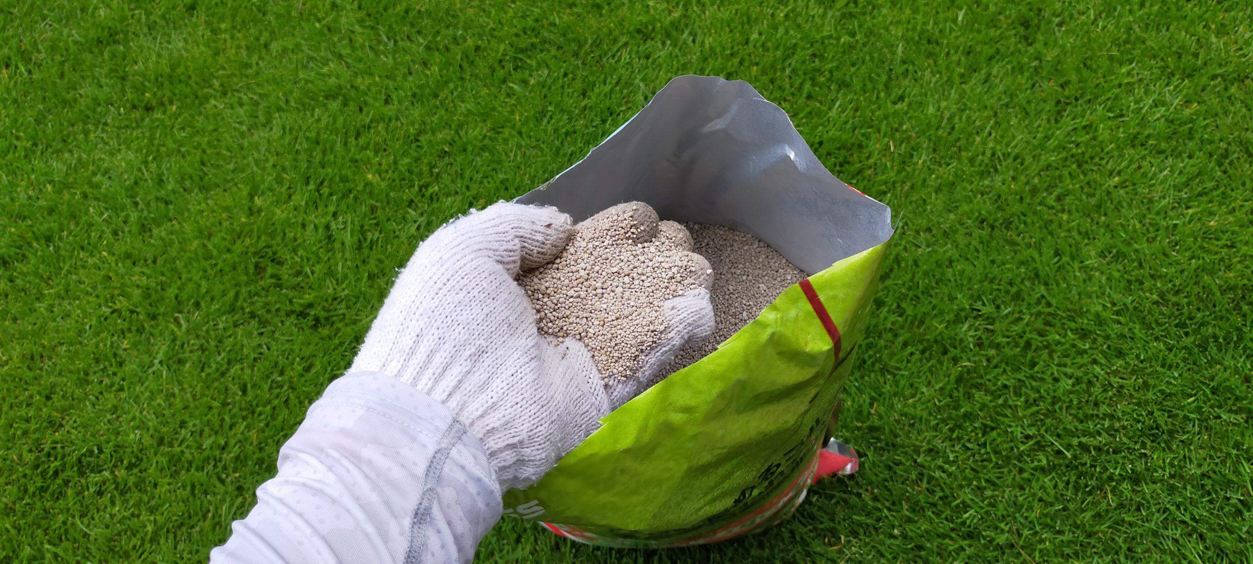芝生の肥料おすすめ9選!グングン育つよ😃✨