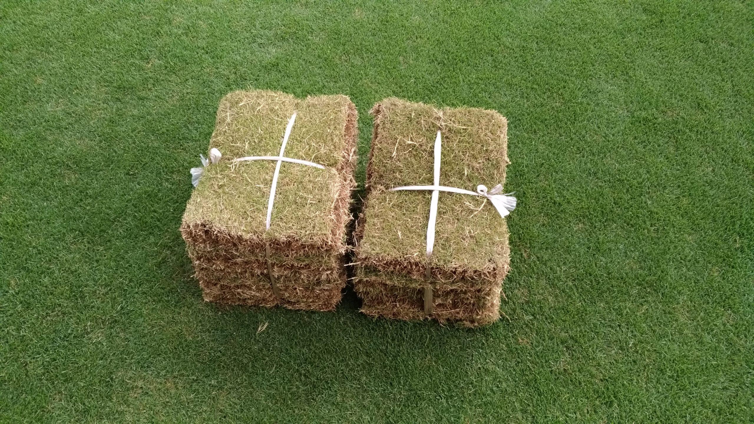 芝生の保管方法!すぐに張れない時はこれだ😃✨
