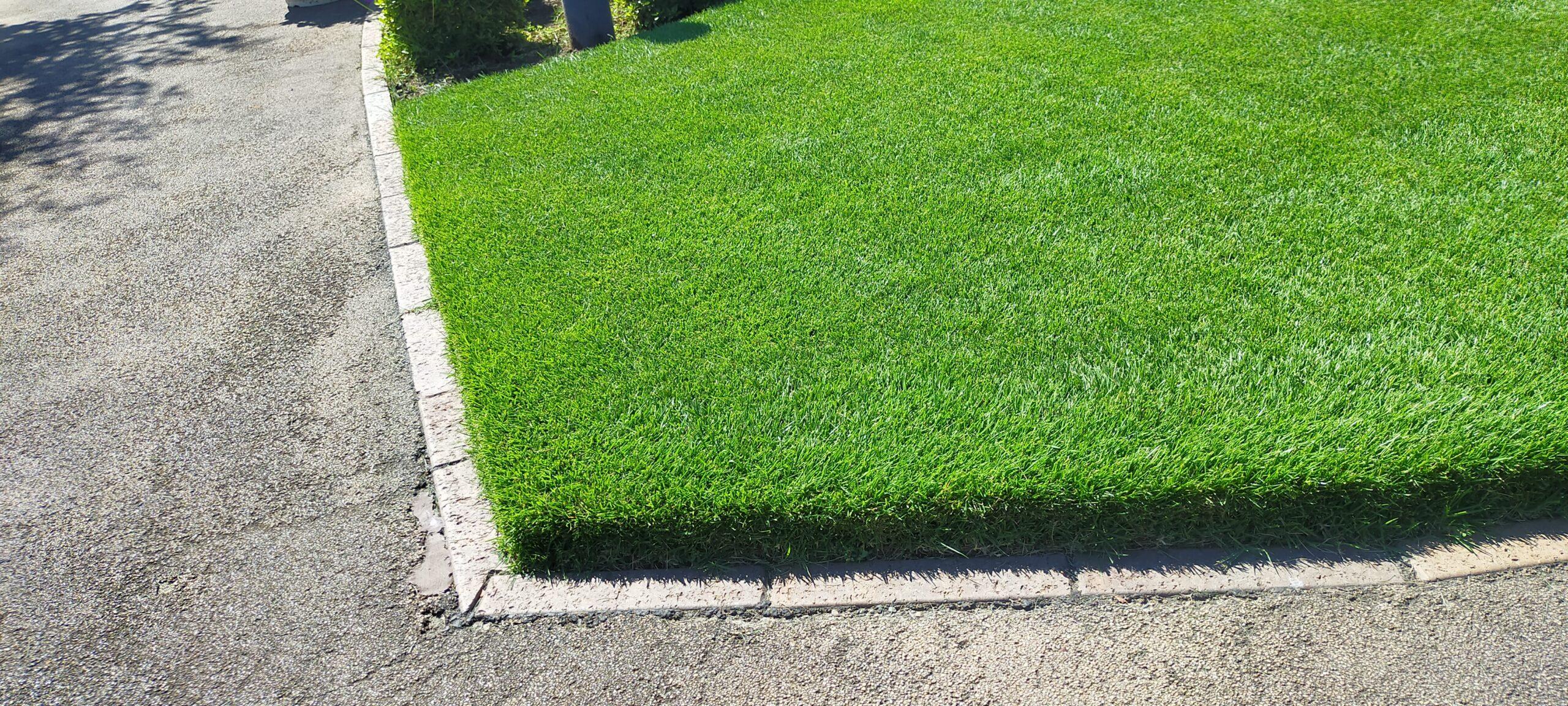 芝生の端っこの切り方は?😄✨【stand.fm】